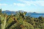 Villa Aurelia Ferienhaus in Les Issambres Côte d'Azur Südfrankreich-Ausblick Palmen Garten und Meer